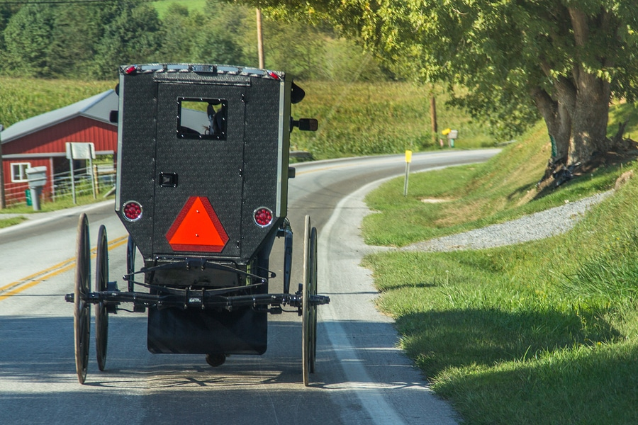 Tours of Amish country are one great reason to plan a getaway to Lanesboro MN.