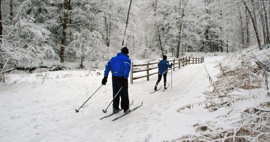 Cross-country skiing is a popular pastime on the Root River Trail.